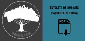 Butlletí web